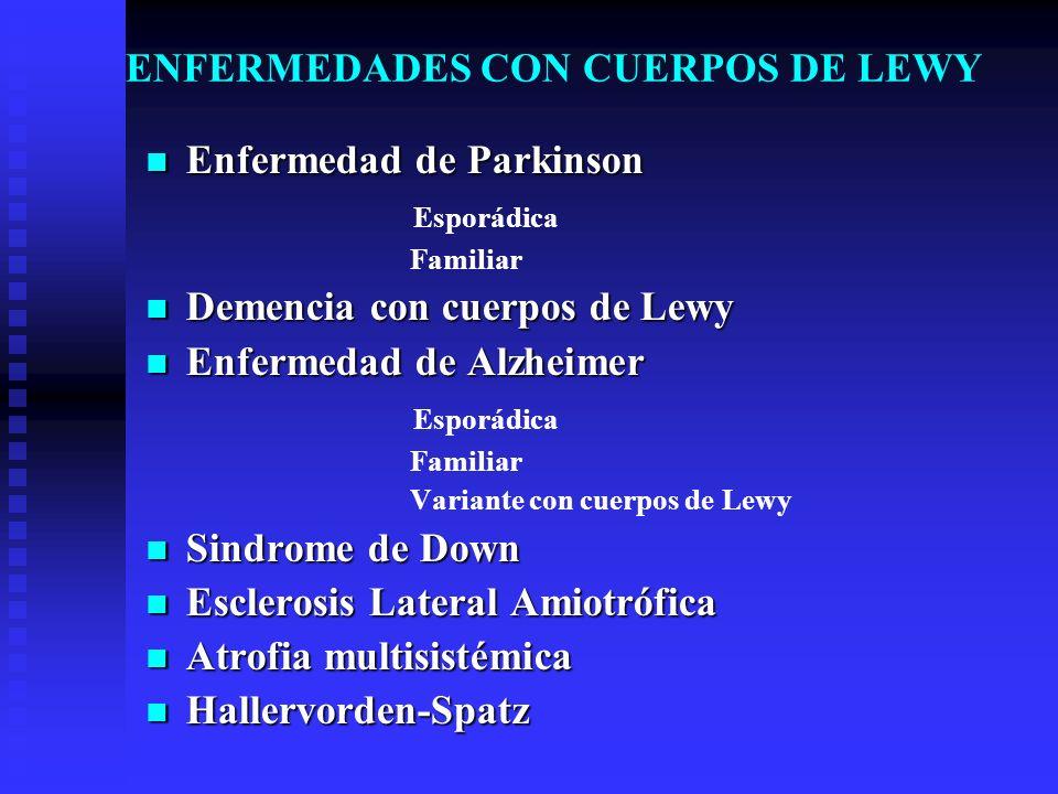 ENFERMEDADES CON CUERPOS DE LEWY