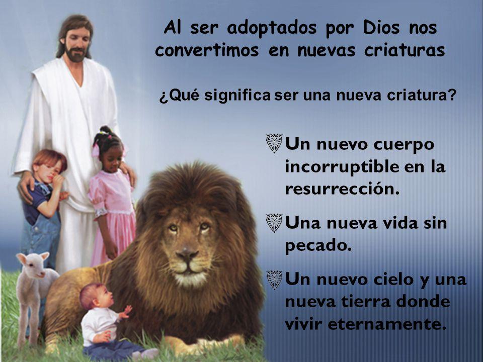 Al ser adoptados por Dios nos convertimos en nuevas criaturas