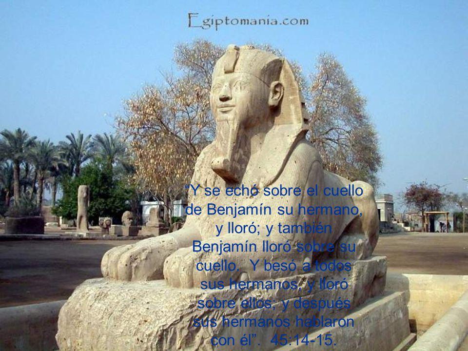 Y se echó sobre el cuello de Benjamín su hermano, y lloró; y también Benjamín lloró sobre su cuello.