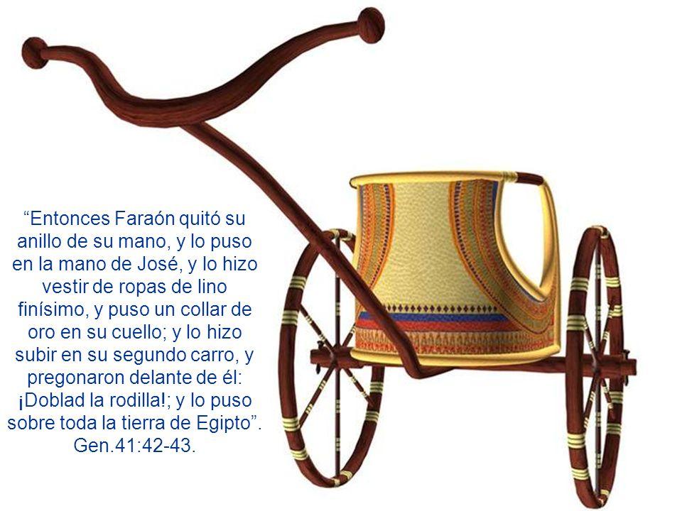 Entonces Faraón quitó su anillo de su mano, y lo puso en la mano de José, y lo hizo vestir de ropas de lino finísimo, y puso un collar de oro en su cuello; y lo hizo subir en su segundo carro, y pregonaron delante de él: ¡Doblad la rodilla!; y lo puso sobre toda la tierra de Egipto .