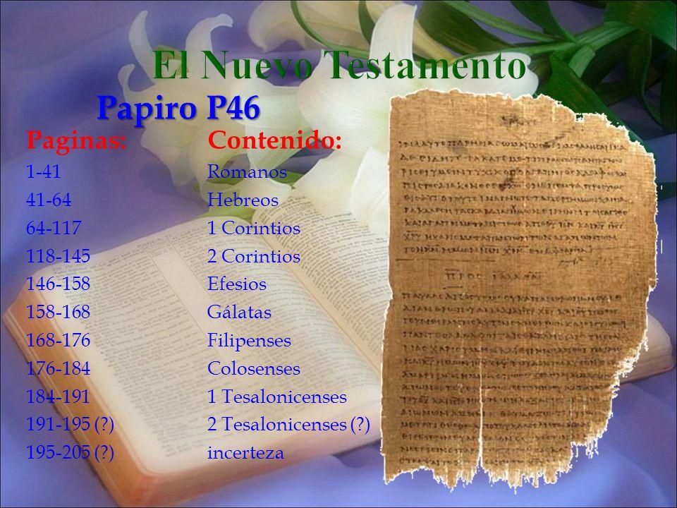 El Nuevo Testamento Papiro P46 Paginas: Contenido: 1-41 Romanos 41-64