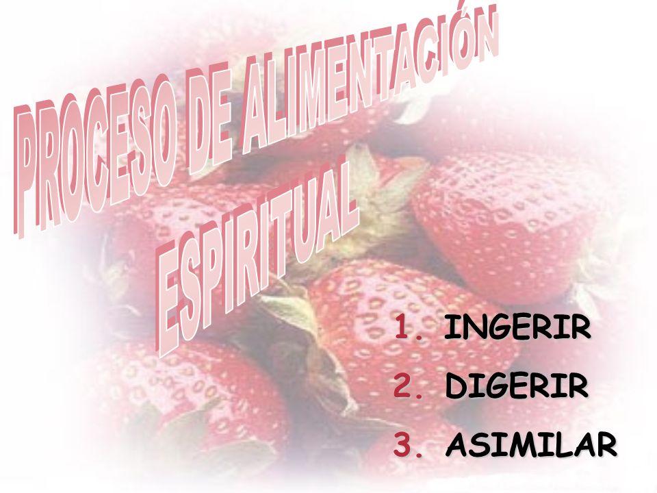 PROCESO DE ALIMENTACIÓN