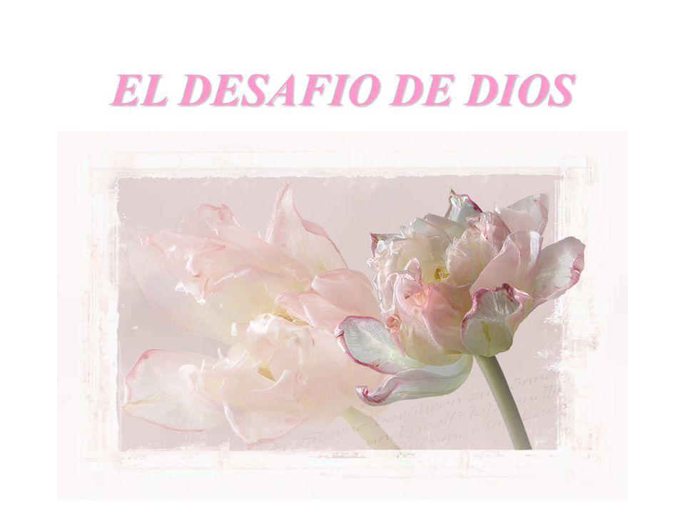 EL DESAFIO DE DIOS