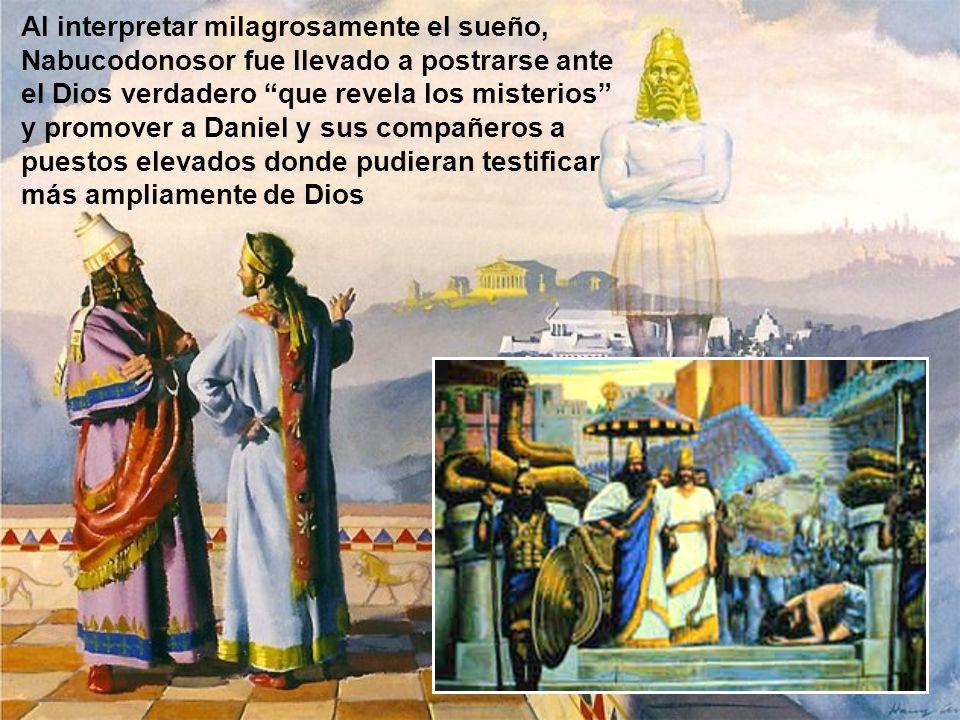 Al interpretar milagrosamente el sueño, Nabucodonosor fue llevado a postrarse ante el Dios verdadero que revela los misterios y promover a Daniel y sus compañeros a puestos elevados donde pudieran testificar más ampliamente de Dios