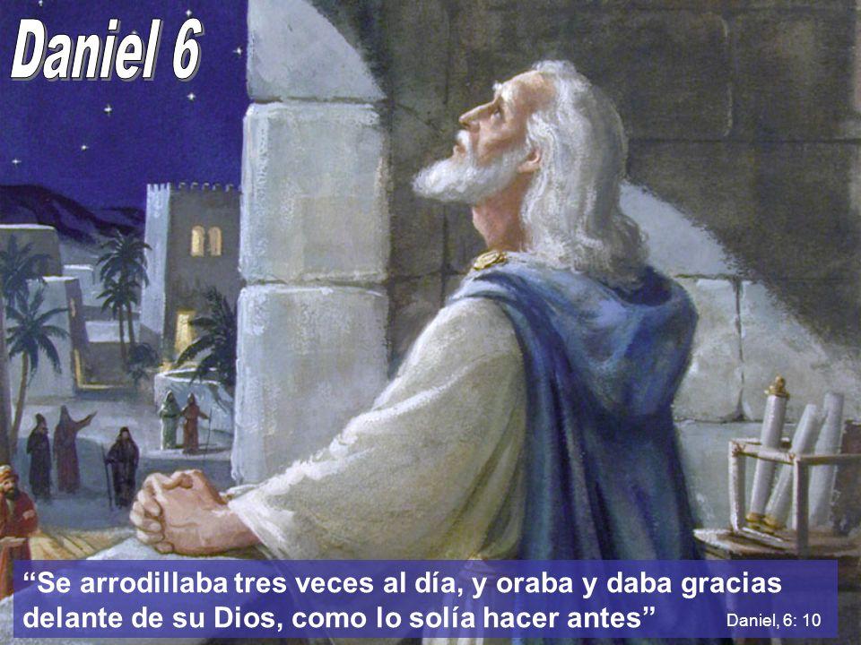 Daniel 6 Se arrodillaba tres veces al día, y oraba y daba gracias delante de su Dios, como lo solía hacer antes