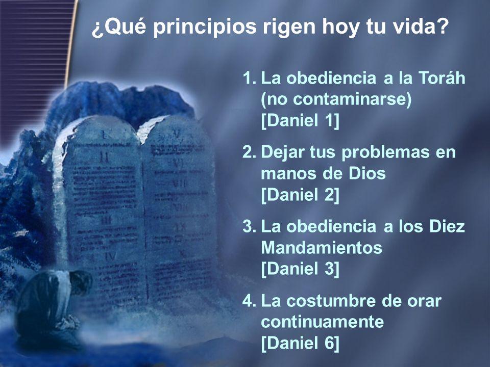 ¿Qué principios rigen hoy tu vida