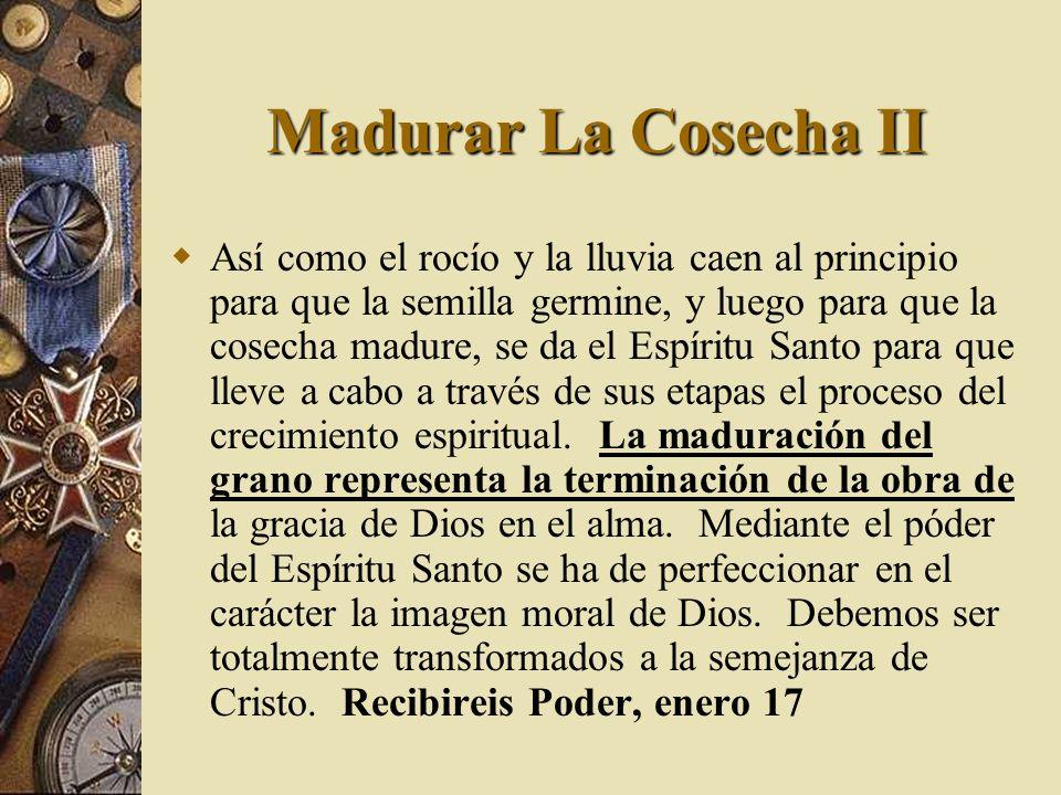 Madurar La Cosecha II