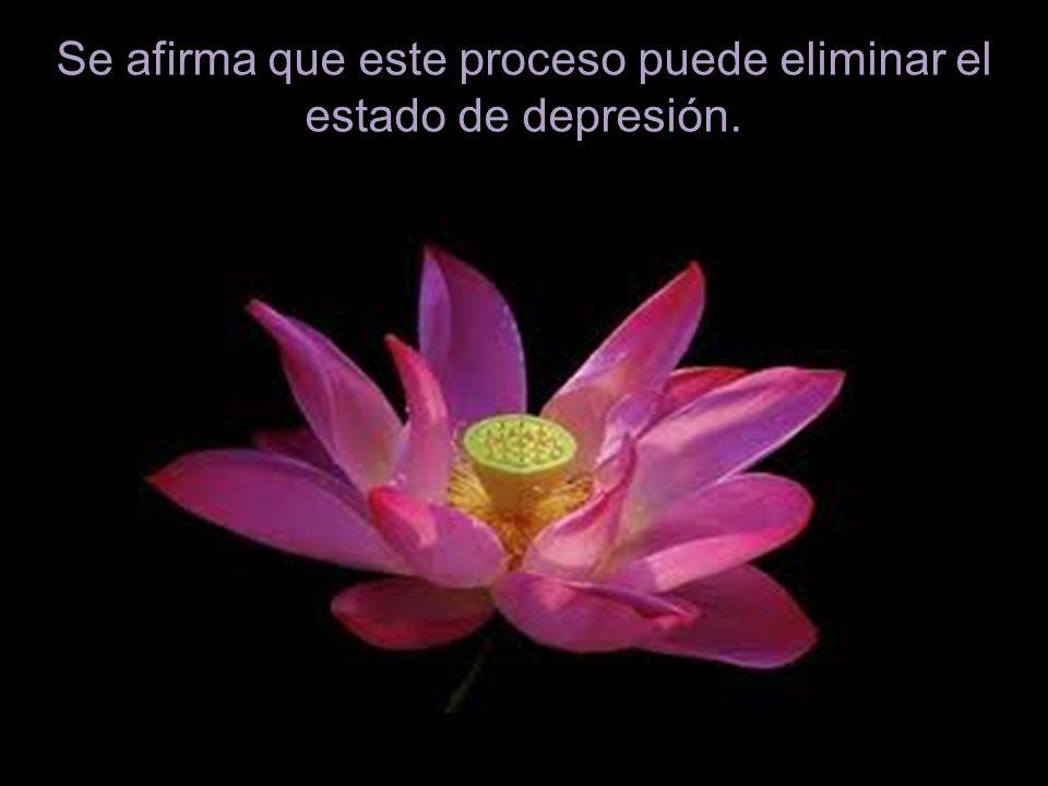 Se afirma que este proceso puede eliminar el estado de depresión.