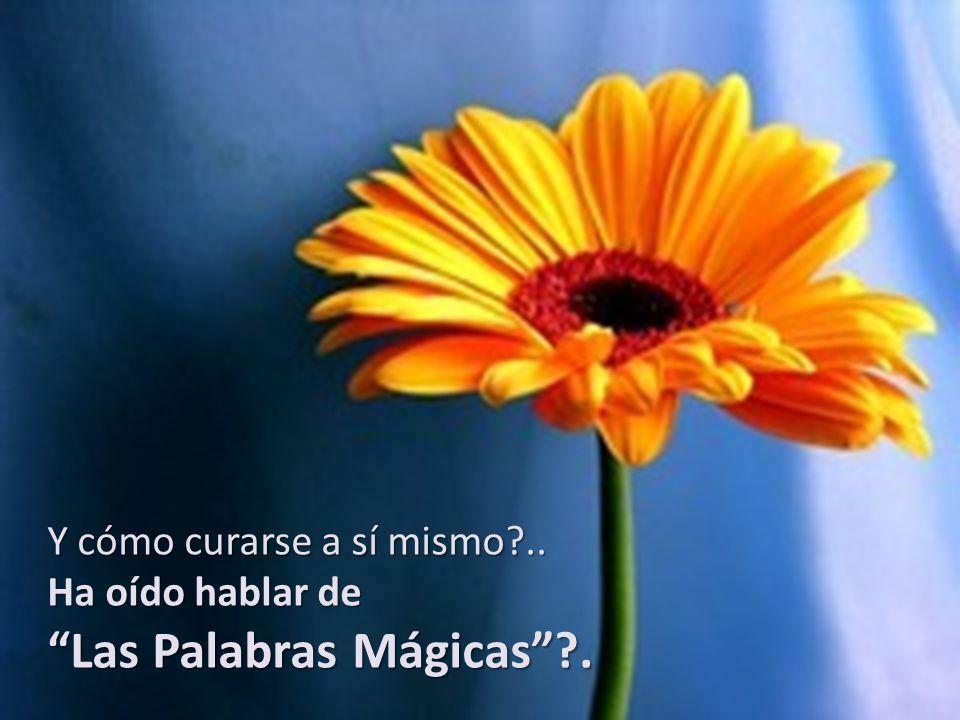 Las Palabras Mágicas .