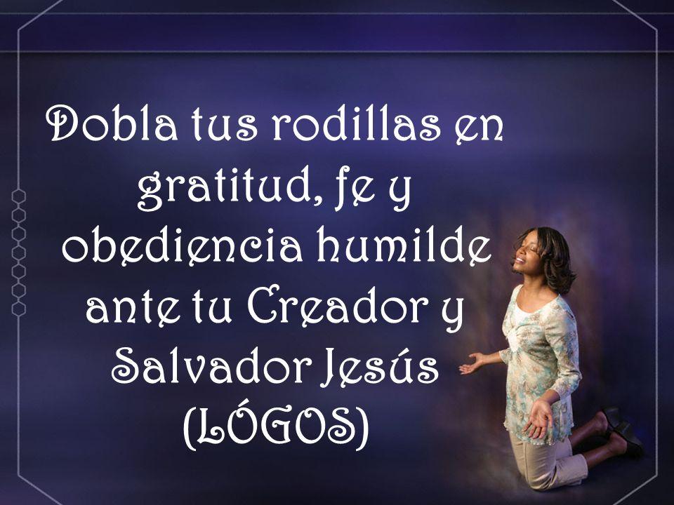 Dobla tus rodillas en gratitud, fe y obediencia humilde ante tu Creador y Salvador Jesús (LÓGOS)