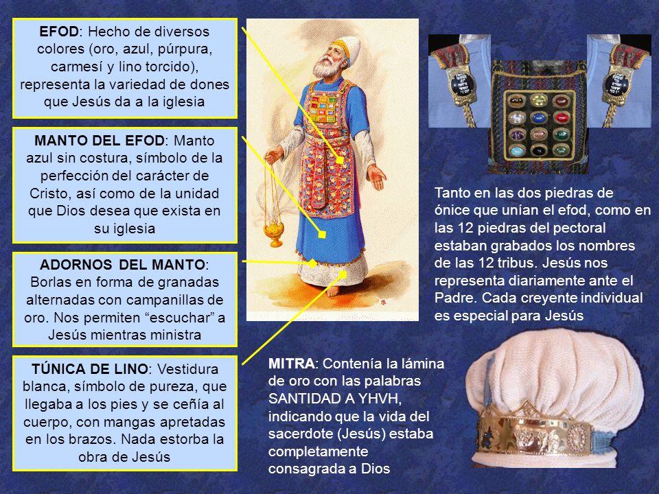 EFOD: Hecho de diversos colores (oro, azul, púrpura, carmesí y lino torcido), representa la variedad de dones que Jesús da a la iglesia