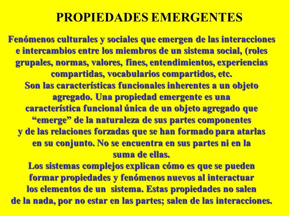 PROPIEDADES EMERGENTES