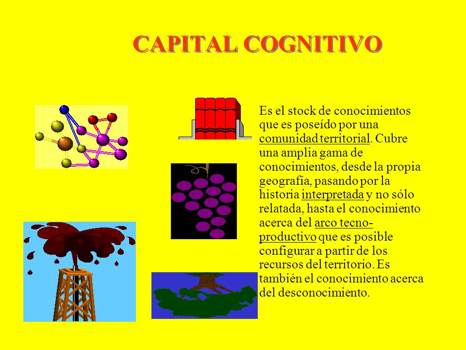 CAPITAL COGNITIVO