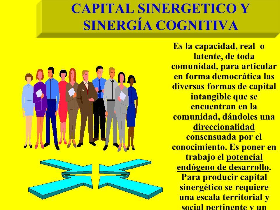 CAPITAL SINERGETICO Y SINERGÍA COGNITIVA