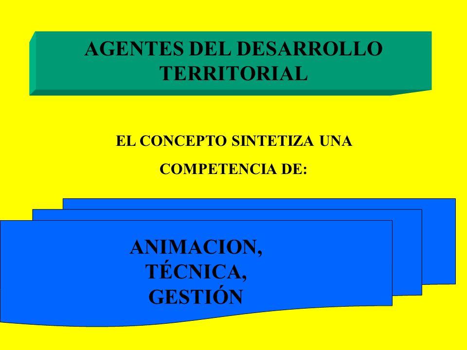 AGENTES DEL DESARROLLO TERRITORIAL