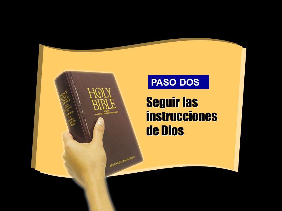 Seguir las instrucciones de Dios