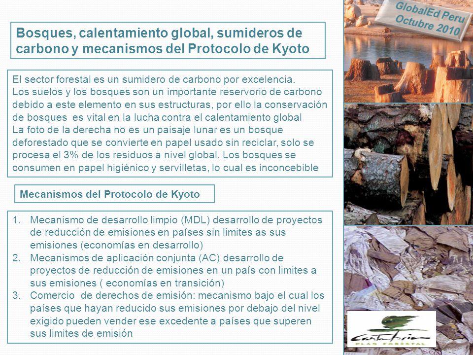 GlobalEd Peru Octubre 2010. Bosques, calentamiento global, sumideros de carbono y mecanismos del Protocolo de Kyoto.