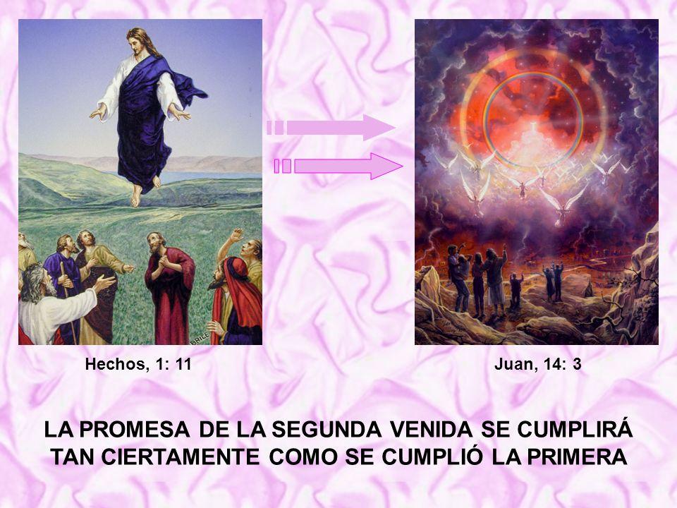 Hechos, 1: 11 Juan, 14: 3.