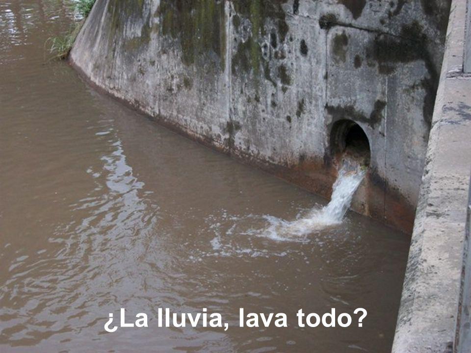 ¿La lluvia, lava todo