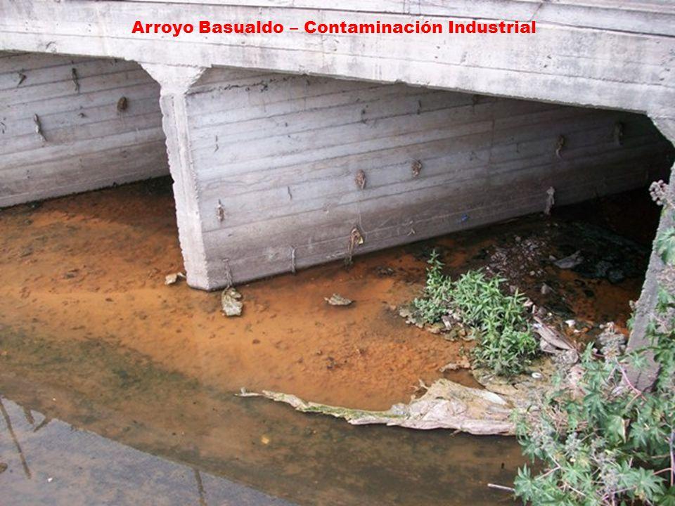 Arroyo Basualdo – Contaminación Industrial