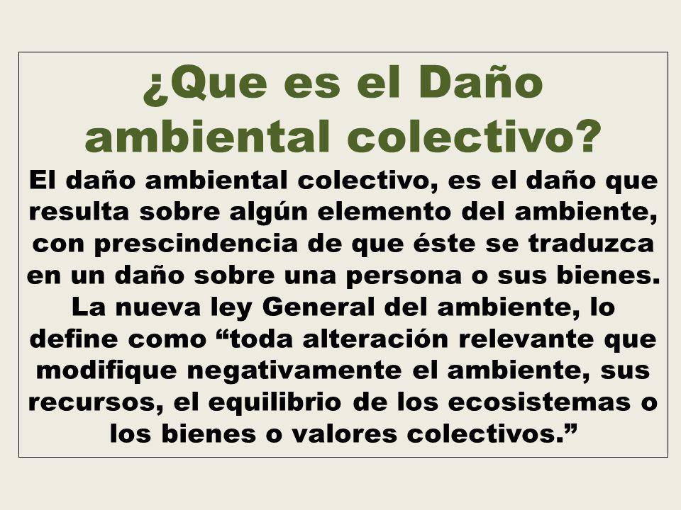 ¿Que es el Daño ambiental colectivo