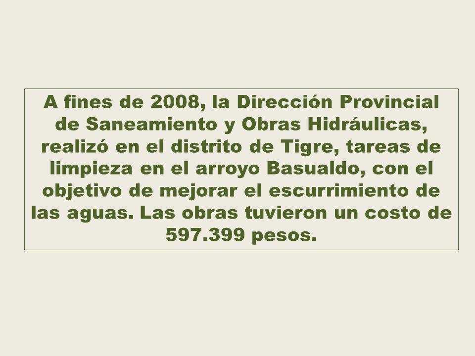 A fines de 2008, la Dirección Provincial de Saneamiento y Obras Hidráulicas, realizó en el distrito de Tigre, tareas de limpieza en el arroyo Basualdo, con el objetivo de mejorar el escurrimiento de las aguas.