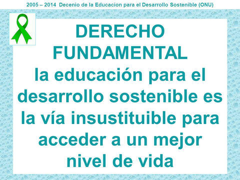 2005 – 2014 Decenio de la Educacion para el Desarrollo Sostenible (ONU)