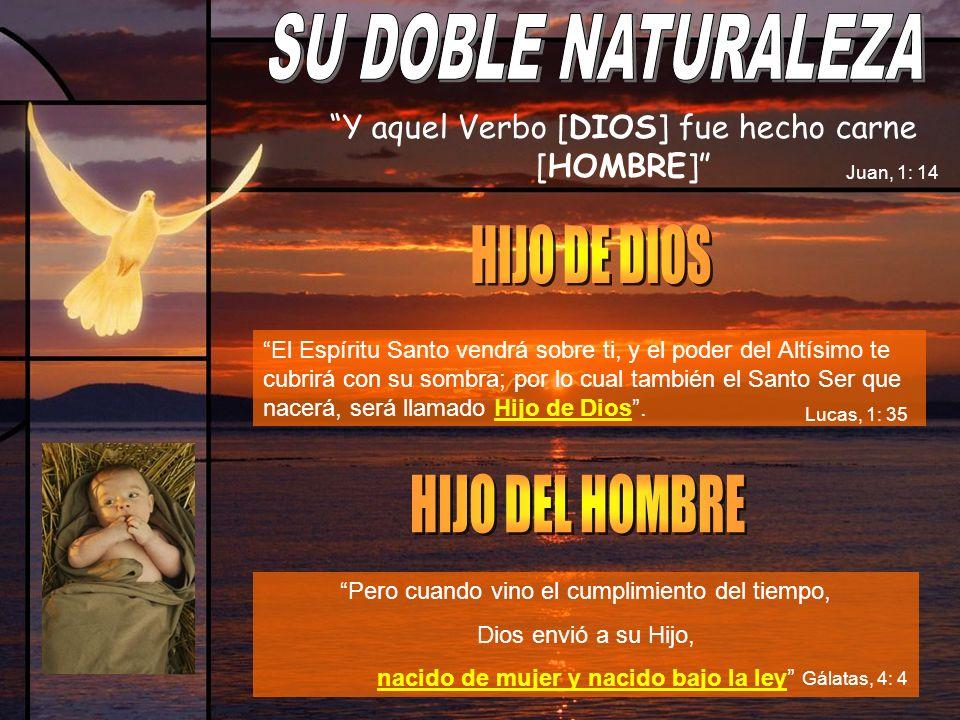 SU DOBLE NATURALEZA HIJO DE DIOS HIJO DEL HOMBRE