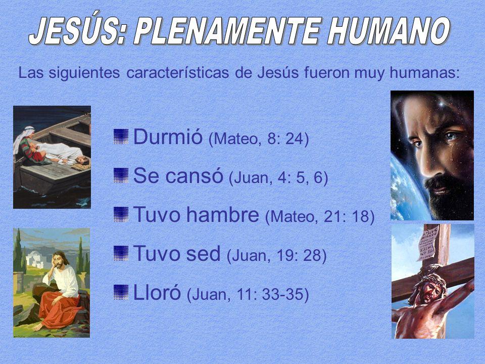 JESÚS: PLENAMENTE HUMANO