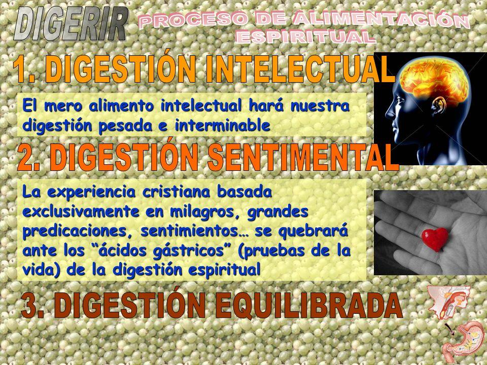 PROCESO DE ALIMENTACIÓN ESPIRITUAL 1. DIGESTIÓN INTELECTUAL