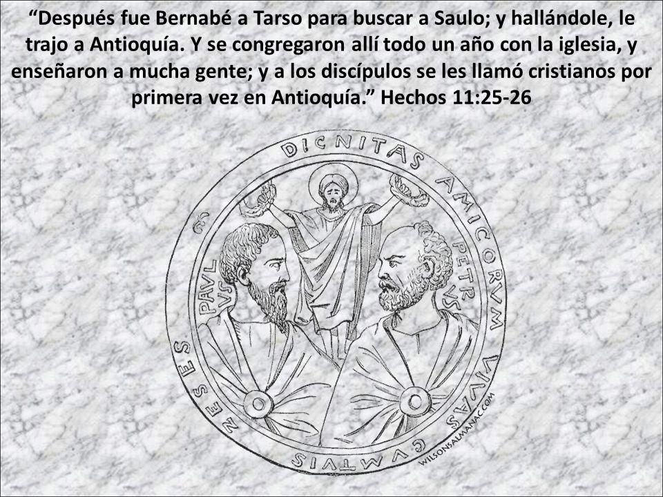 Después fue Bernabé a Tarso para buscar a Saulo; y hallándole, le trajo a Antioquía.