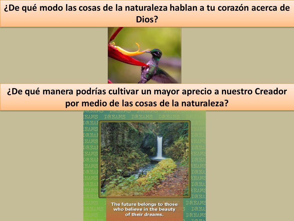 ¿De qué modo las cosas de la naturaleza hablan a tu corazón acerca de Dios