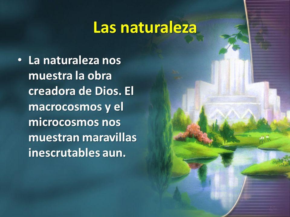 Las naturaleza La naturaleza nos muestra la obra creadora de Dios.