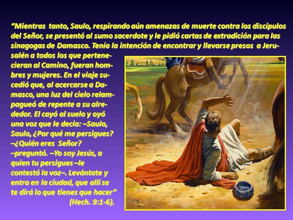 Mientras tanto, Saulo, respirando aún amenazas de muerte contra los discípulos