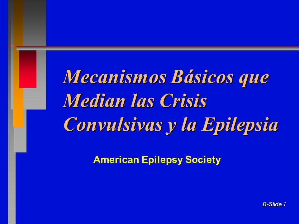 Mecanismos Básicos que Median las Crisis Convulsivas y la Epilepsia