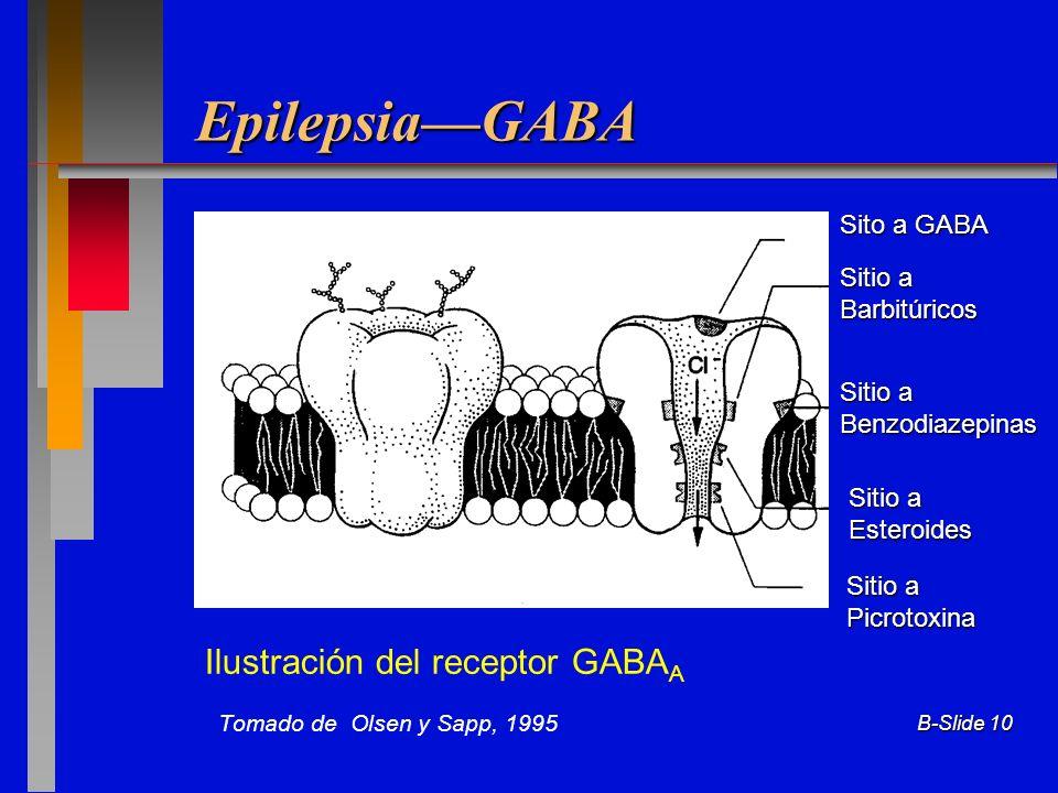 Epilepsia—GABA Ilustración del receptor GABAA Sito a GABA Sitio a