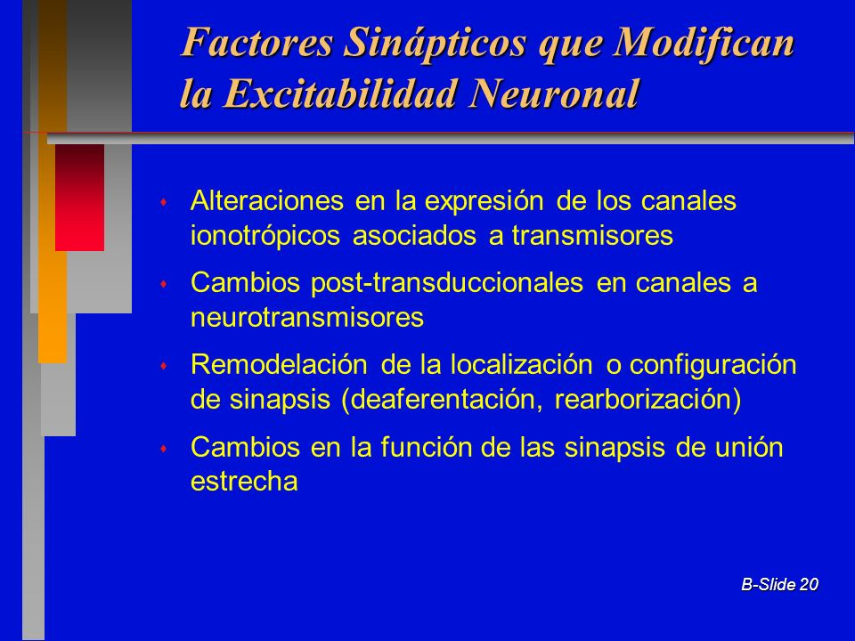 Factores Sinápticos que Modifican la Excitabilidad Neuronal