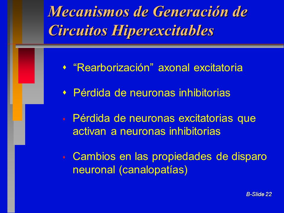 Mecanismos de Generación de Circuitos Hiperexcitables