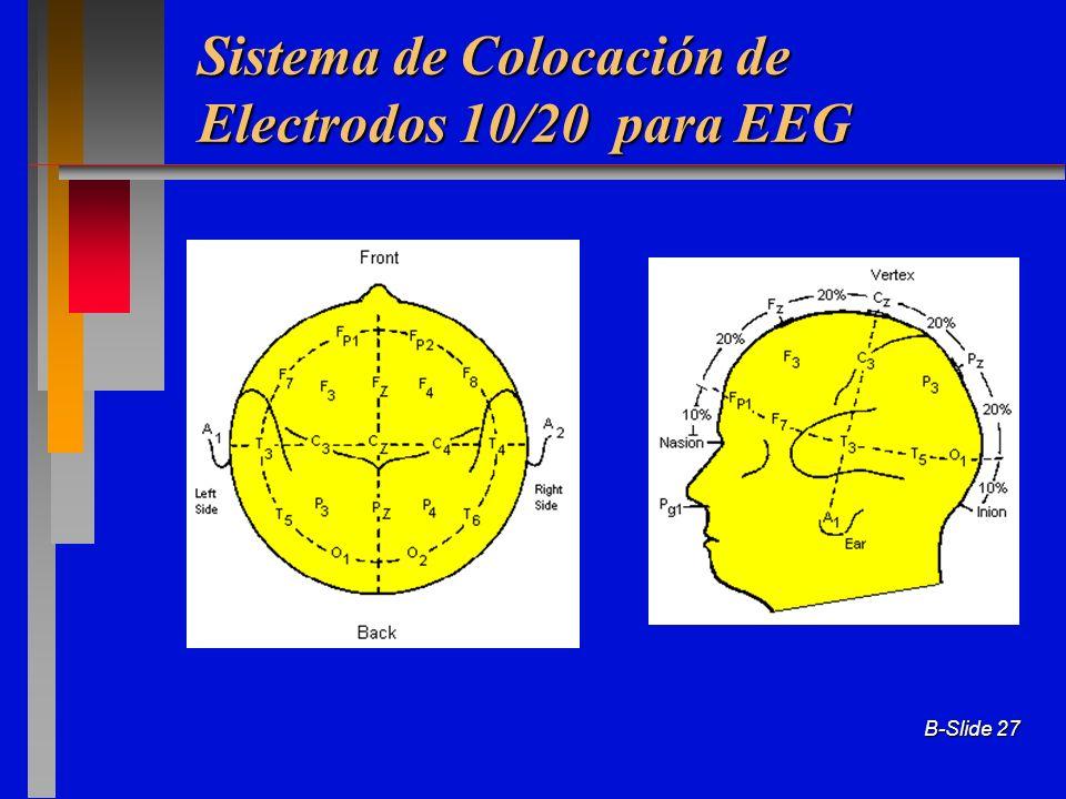 Sistema de Colocación de Electrodos 10/20 para EEG
