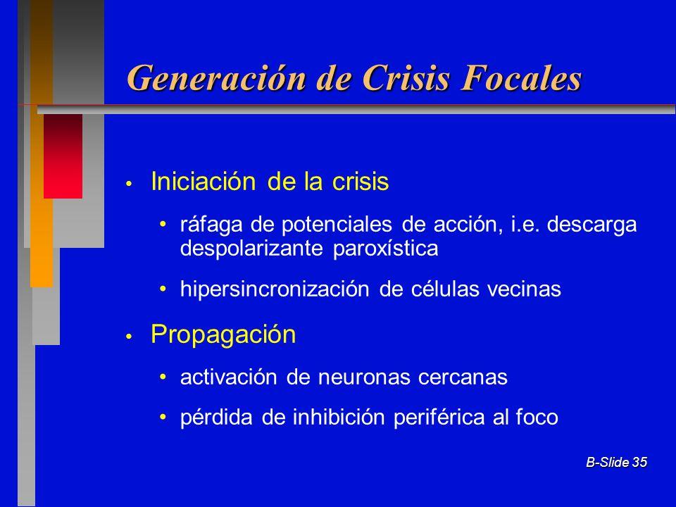Generación de Crisis Focales
