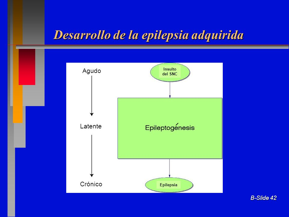 Desarrollo de la epilepsia adquirida
