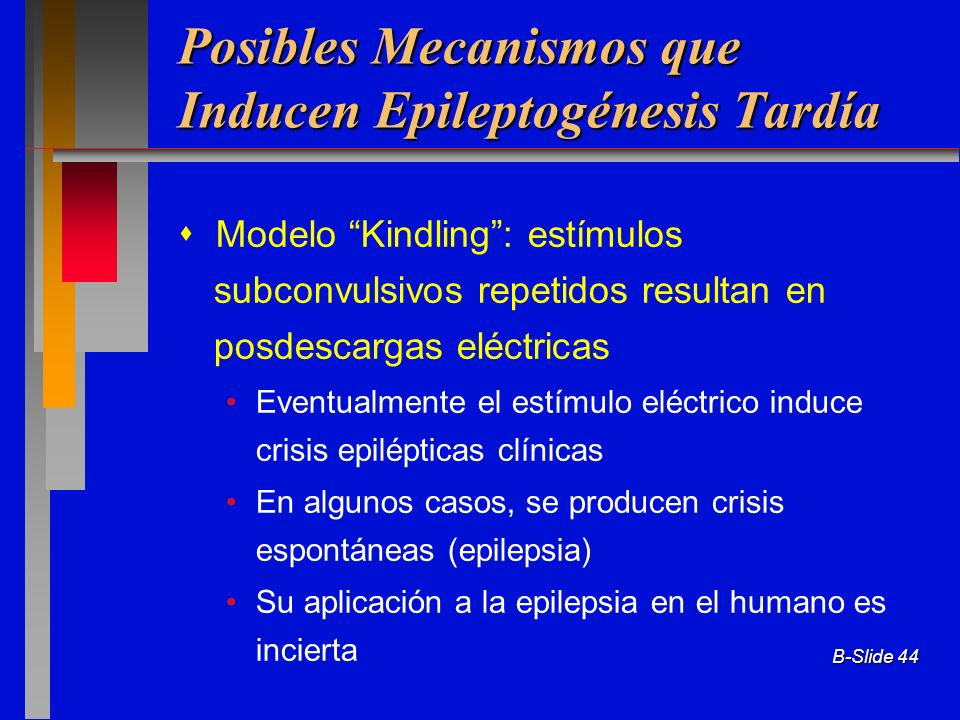 Posibles Mecanismos que Inducen Epileptogénesis Tardía