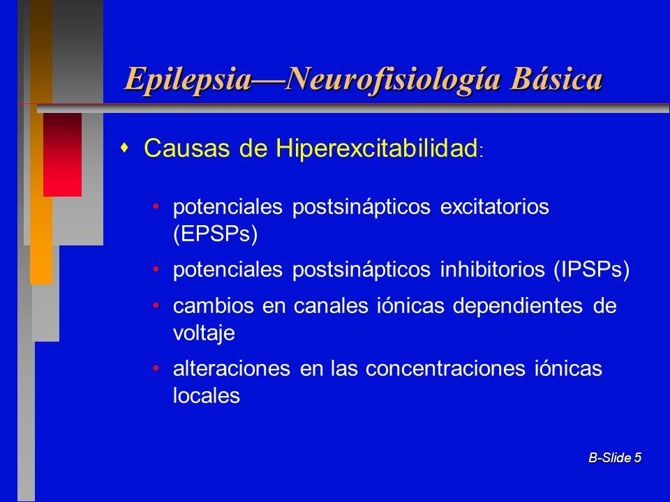 Epilepsia—Neurofisiología Básica