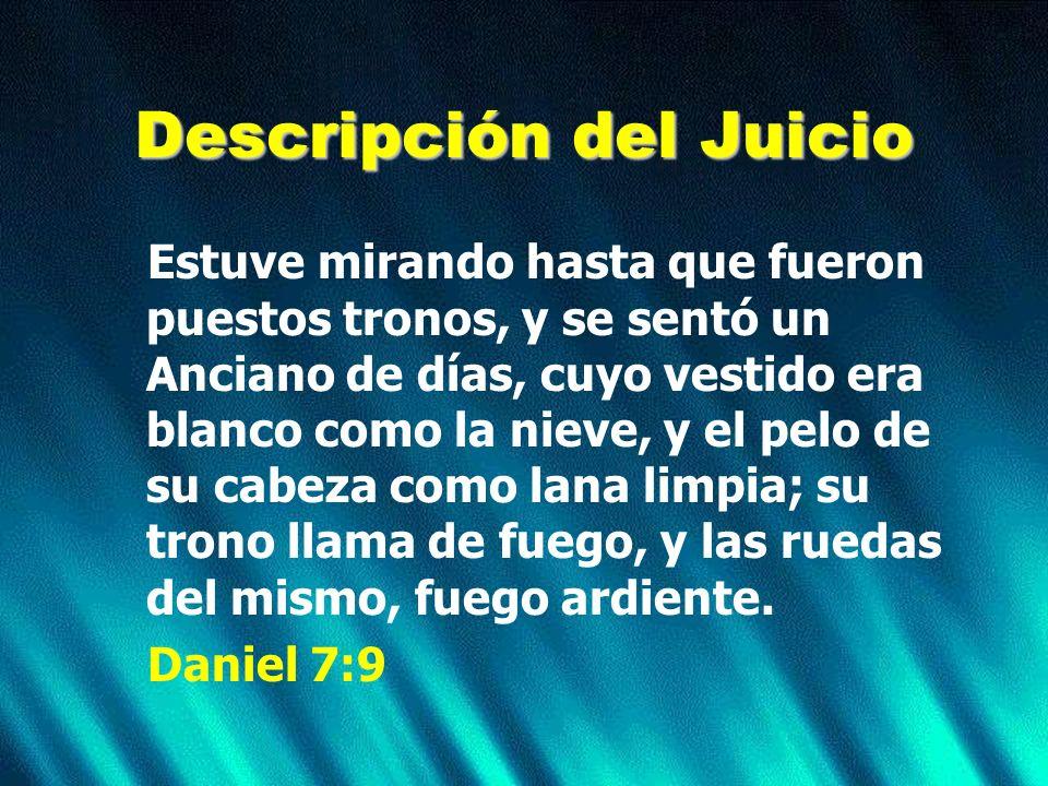 Descripción del Juicio