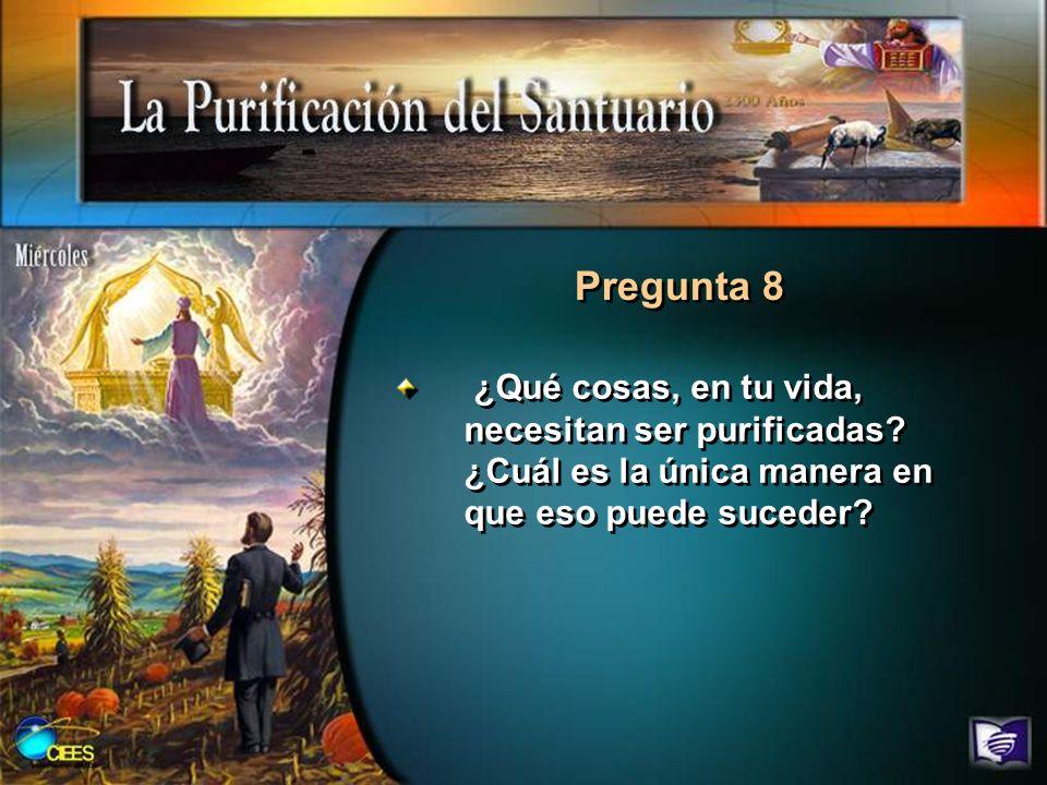 Pregunta 8 ¿Qué cosas, en tu vida, necesitan ser purificadas.