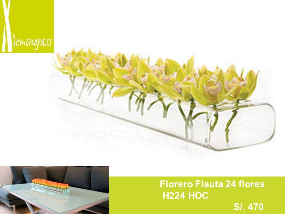 F Florero Flauta 24 flores