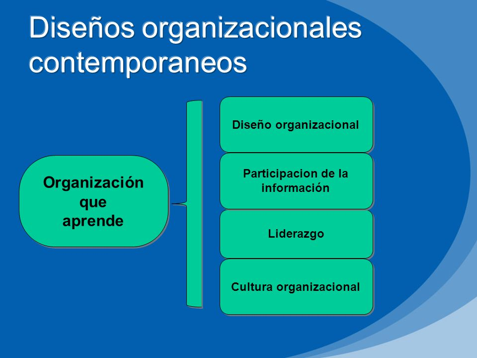 Diseños organizacionales contemporaneos