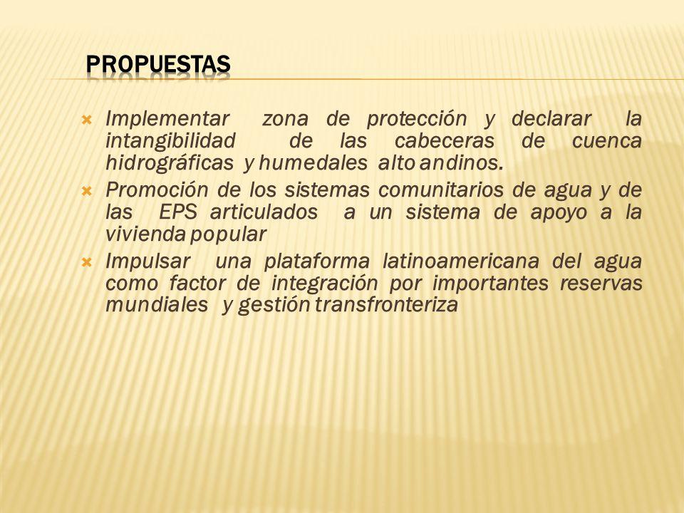Propuestas Implementar zona de protección y declarar la intangibilidad de las cabeceras de cuenca hidrográficas y humedales alto andinos.