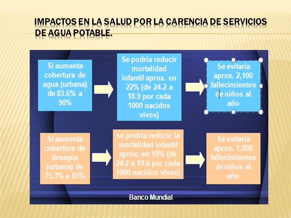 IMPACTOS EN LA SALUD POR LA CARENCIA DE SERVICIOS DE AGUA POTABLE.