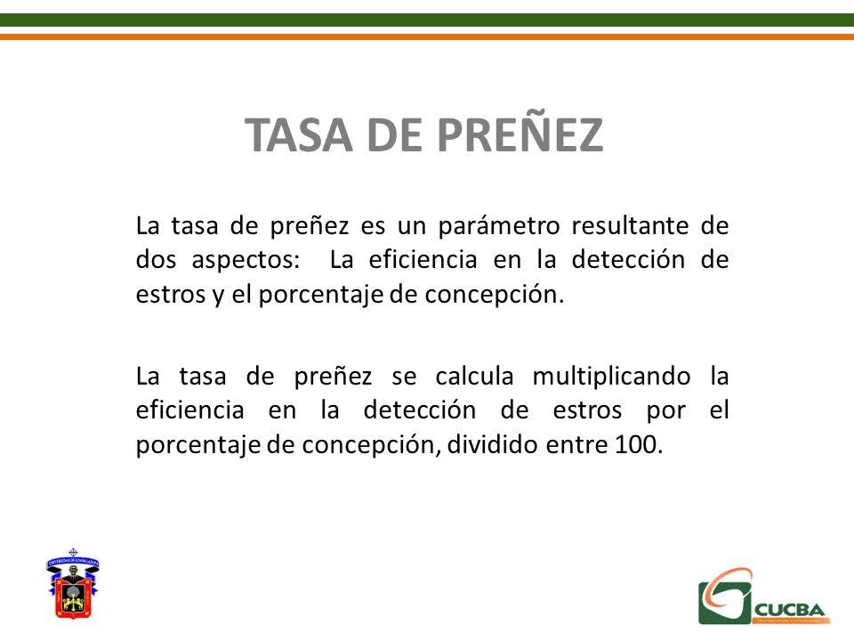 TASA DE PREÑEZ La tasa de preñez es un parámetro resultante de dos aspectos: La eficiencia en la detección de estros y el porcentaje de concepción.